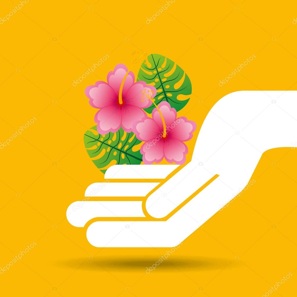 hand hold beautiful flower pink lily