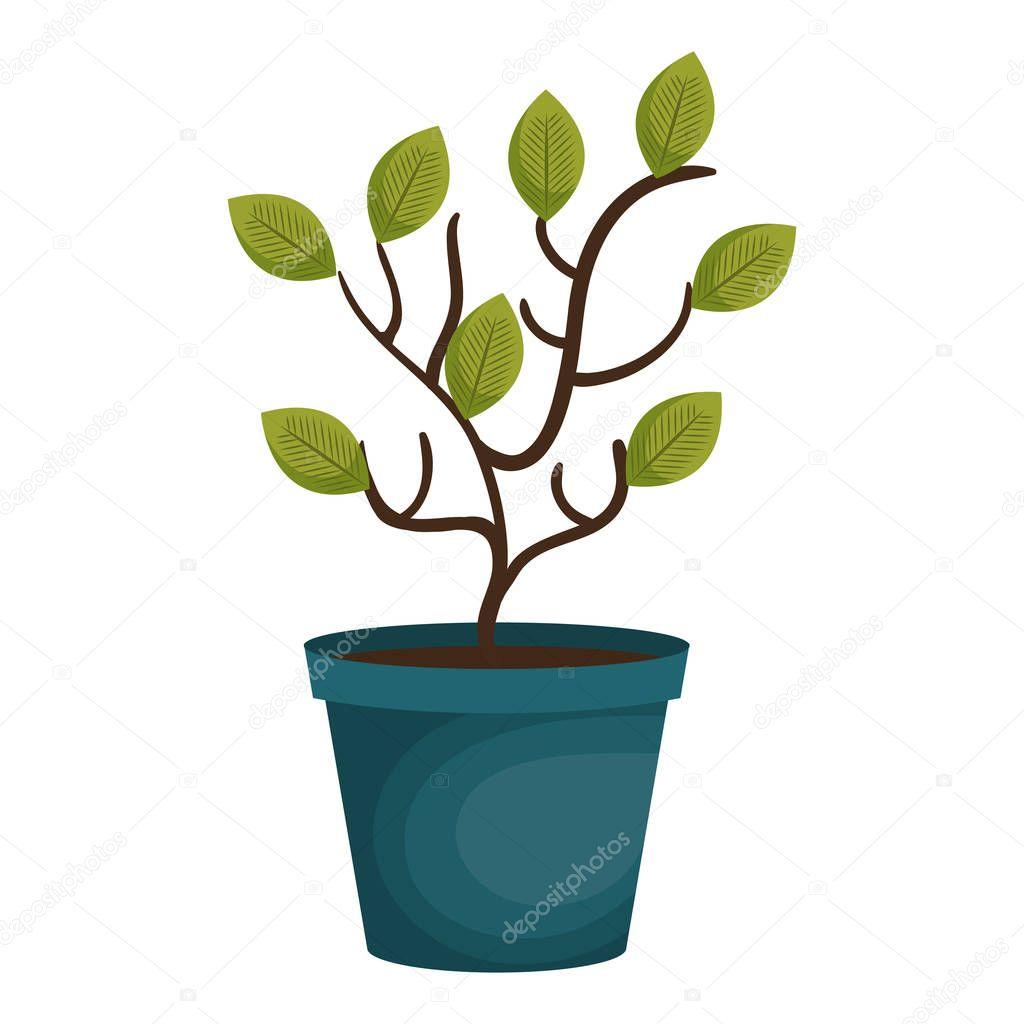 plant garden pot icon