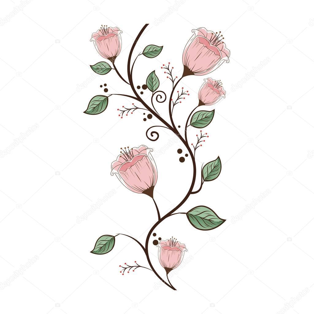 carte de belle fleur décoration — Image vectorielle yupiramos