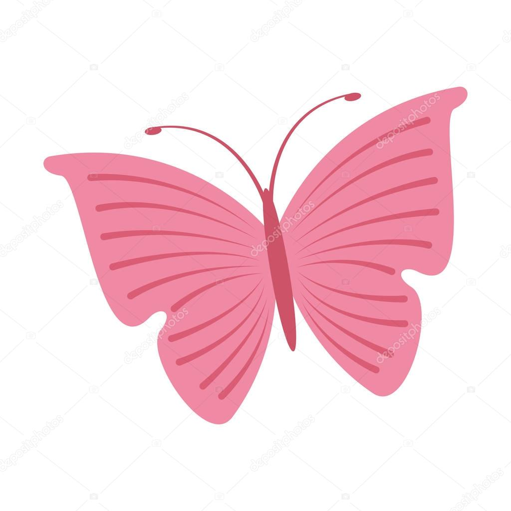 cute butterfly pink icon � stock vector 169 yupiramos 130543706