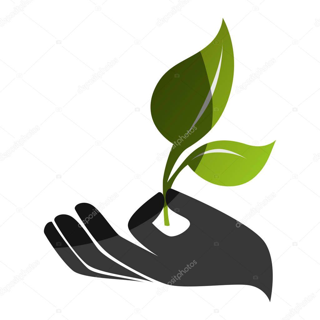 tree plant silhouette icon