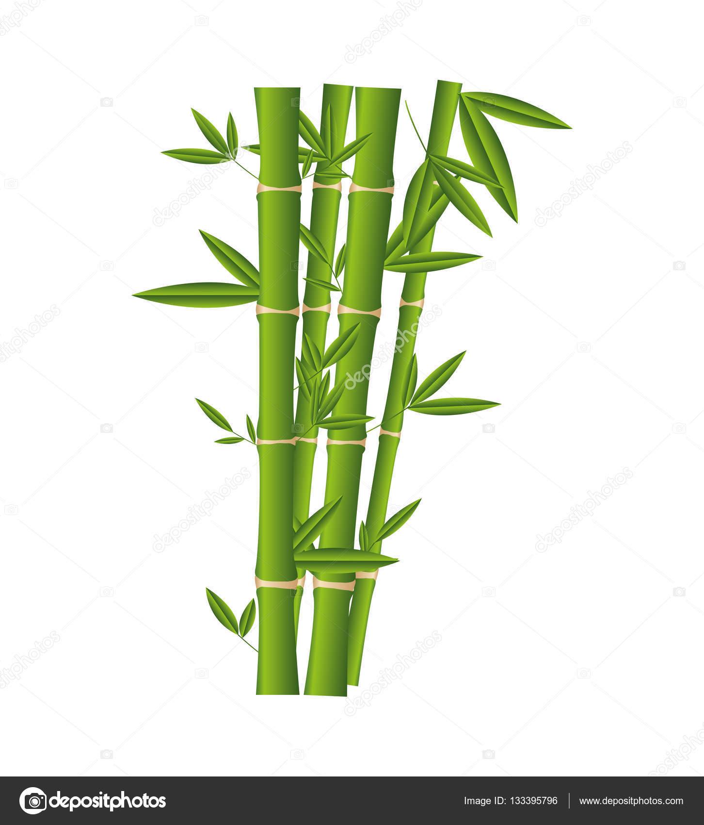 Bamboe plant ge soleerde pictogram stockvector for Bamboe plant