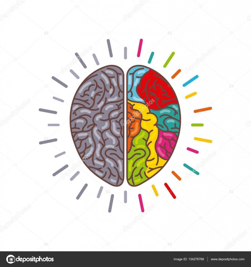 menschliche Gehirn-Symbol — Stockvektor © yupiramos #134276768