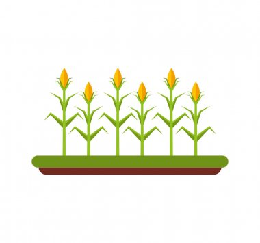 agriculture cultive isolated icon