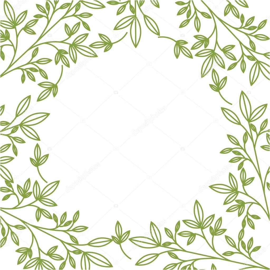 plant and leaves background
