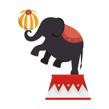 Elephant circus entertainment icon vector illustration design stock vector