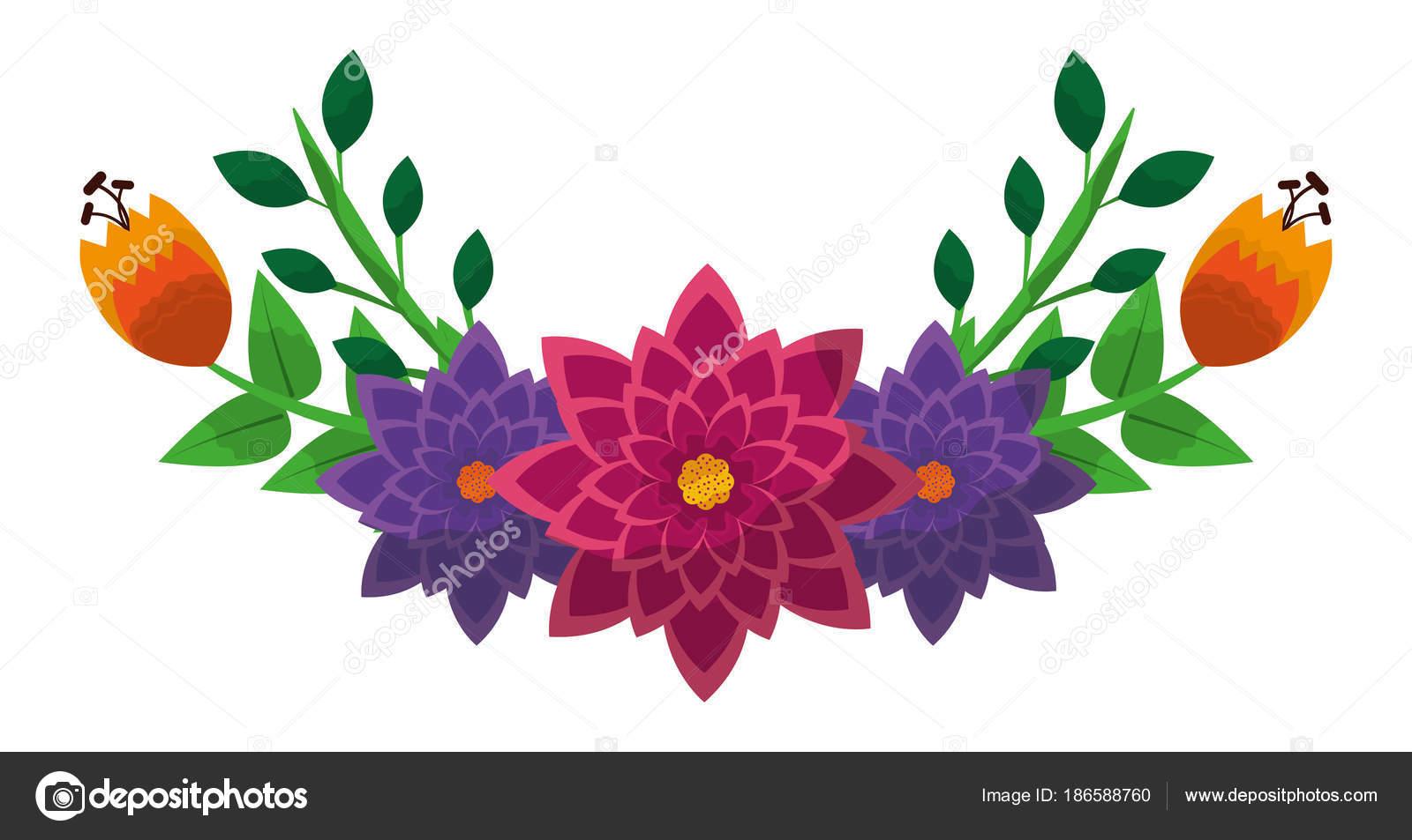 bunch of flowers arrangement vector illustration stock vector