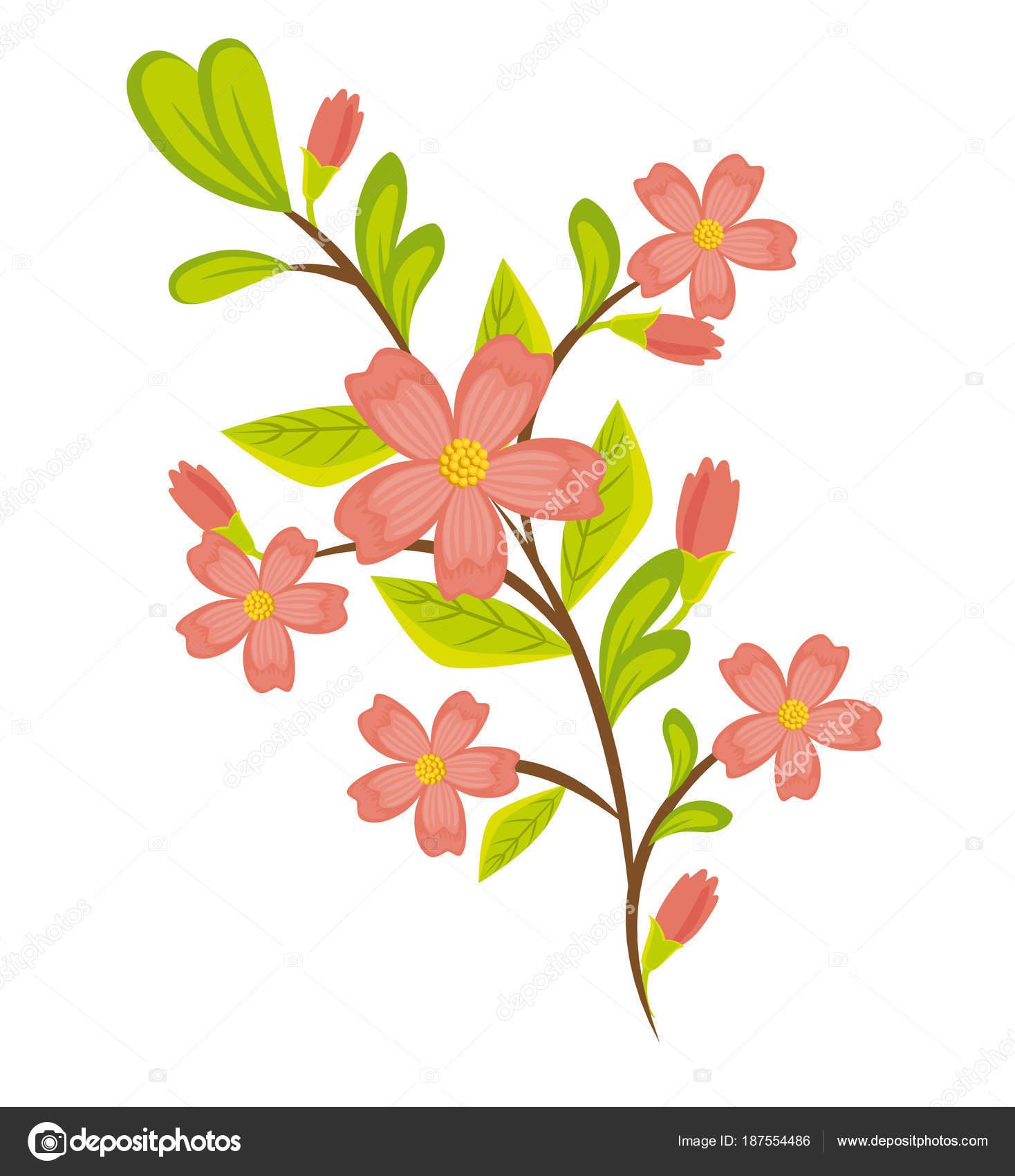 Desenho De Lindas Flores Coloridas Vetores De Stock