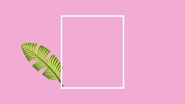 summer tropical template