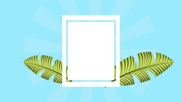 letní tropické šablona