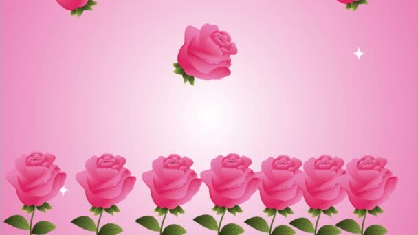 beautifull pink roses flowers garden animation
