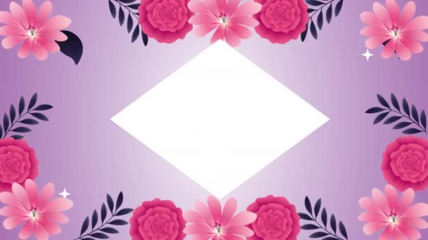 beautifull pink roses flowers garden frame animation