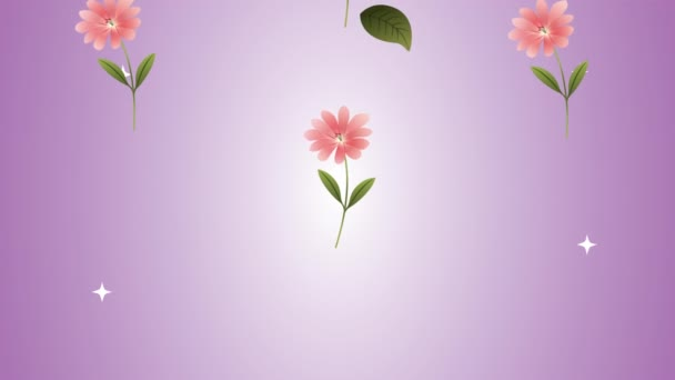 beautifull flowers garden pattern animation