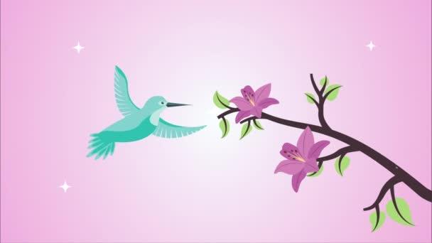 krásné květiny ve větvi s ptáky animace
