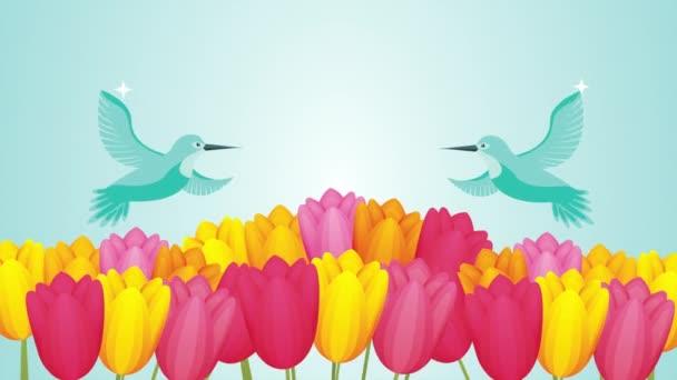 krásné růže květiny zahrada s ptáky scéna