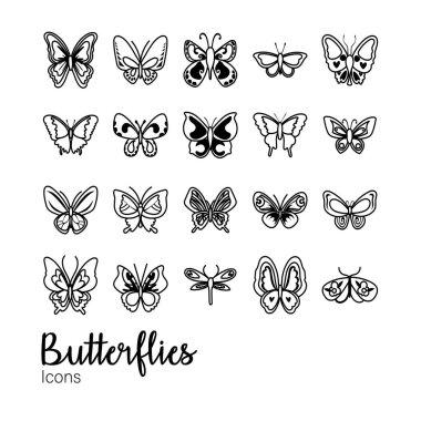 Lepidoptera Set Premium Vector Download For Commercial Use Format Eps Cdr Ai Svg Vector Illustration Graphic Art Design