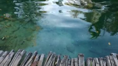 Majestic view on turquoise water and sunny beams in the Plitvice Lakes National Park. Croatia. Europe. Beauty world.