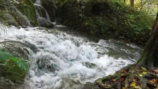 Fenséges kilátás a folyó víz özön és őszi színek, a Plitvicei-tavak Nemzeti Parktól. Horvátország. Európa. Szépség világ