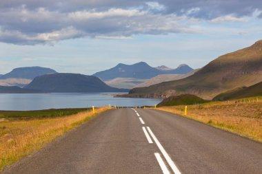 Endless Icelandic Highway