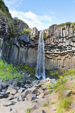 Svartifoss Waterfall in Iceland