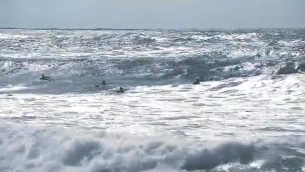 Silhouettes of surfers on the Atlantic ocean waves near Capbreton, France