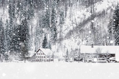 Winter Snowy Bavarian Alpine landscape with snow covered field, house and trees. Magic wintry scenery background at snowfall. Germany, Europe. Monochromatic neutral tones with natural light stock vector