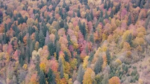 Létání nad podzimní Karpat poblíž Vorohta, Ukrajina