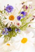 Zátiší s kyticí divokých květin v průhledném džbánu.