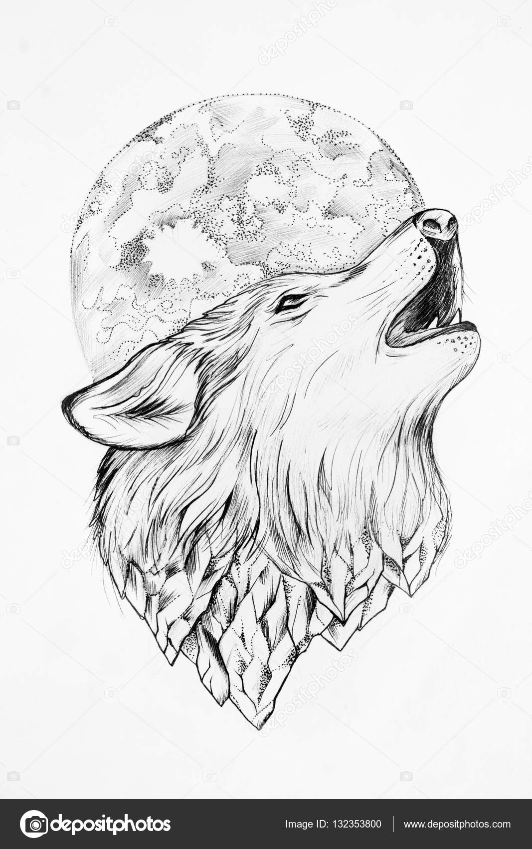sketch of a wolf howling at the moon white background stock photo 132353800