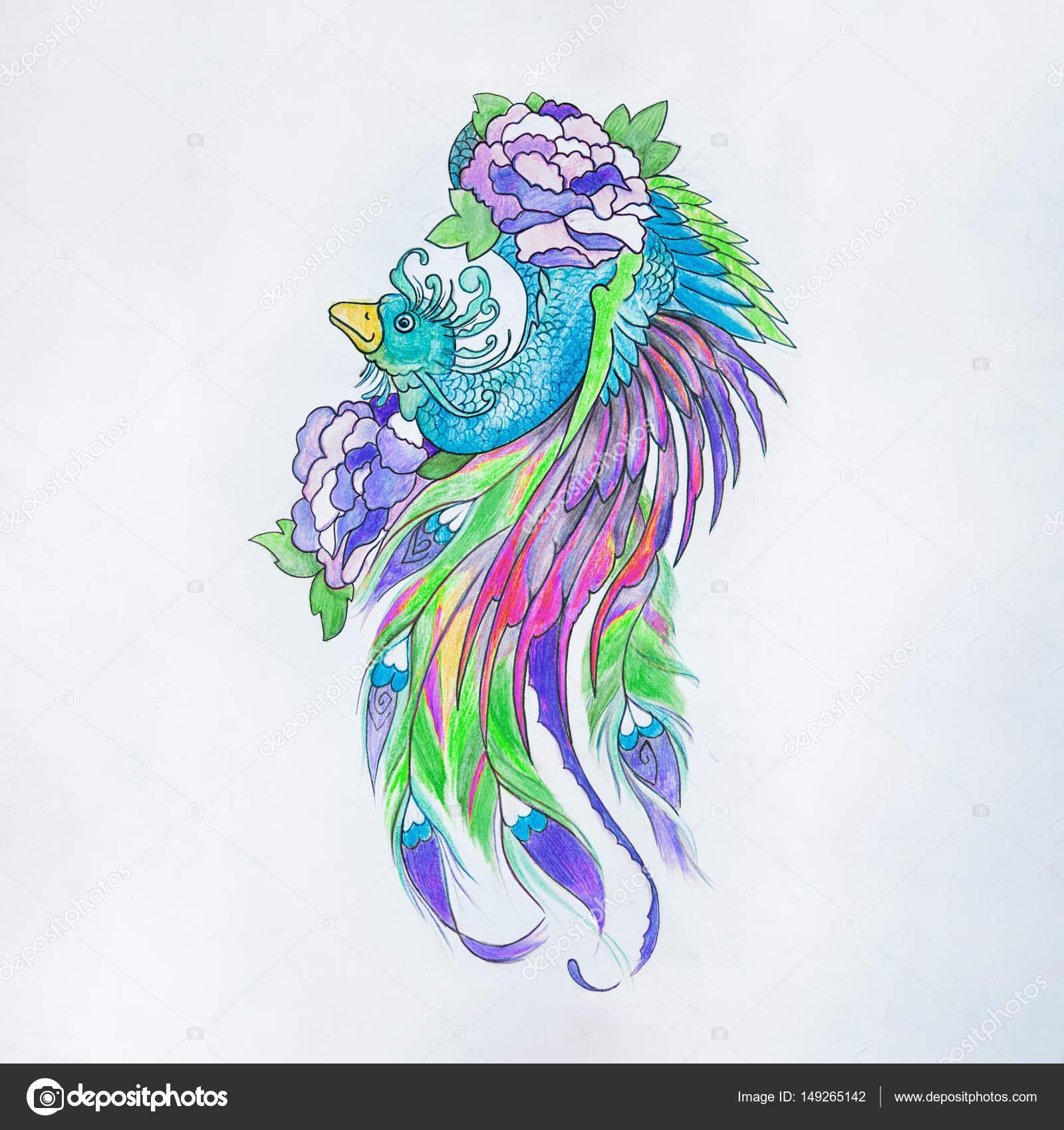 Dibujos Pavos Reales Pintados Dibujo De Pavo Real Hermoso Sobre