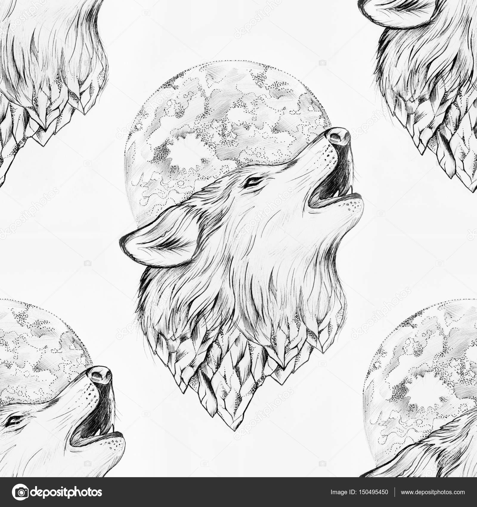 Dibujos Lobo Aullando A La Luna Dibujo A Lapiz Dibujo De Un Lobo