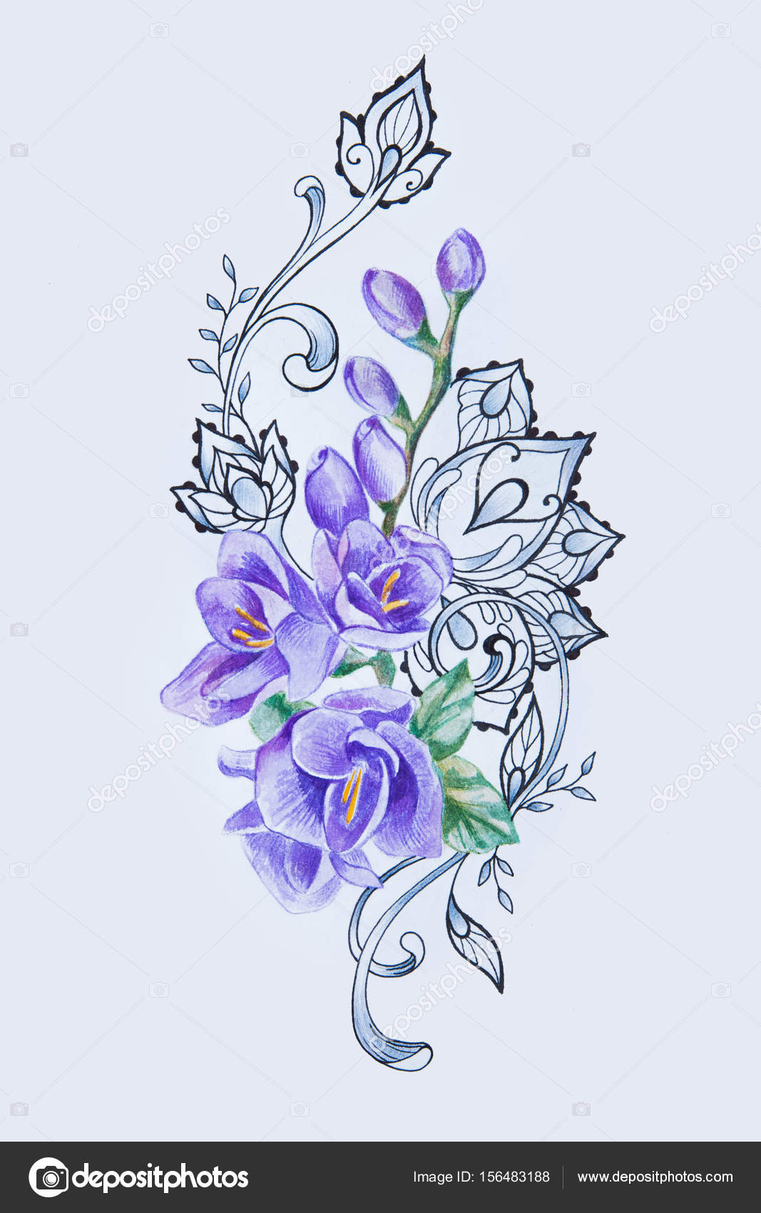 d0730fd13 A sketch of a beautiful purple freesia with patterns on a white background.–  stock image