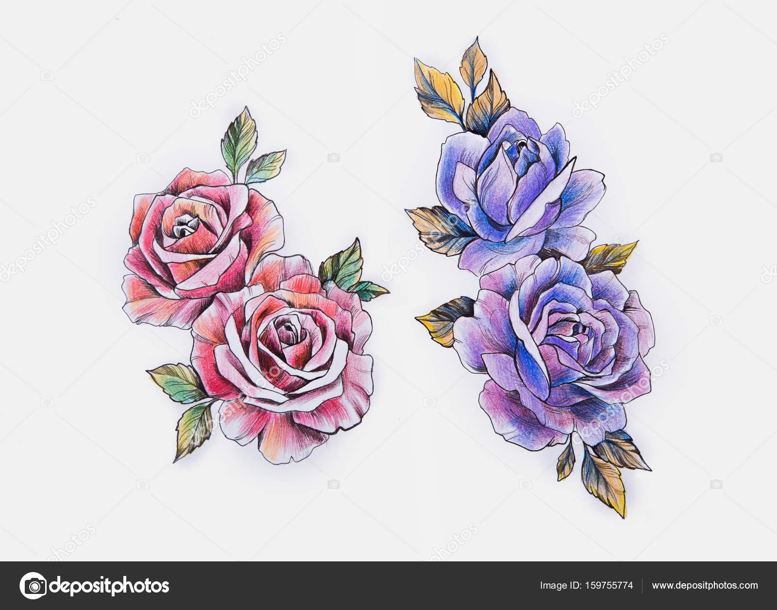 Schizzo Di Un Bellissimo Ramo Di Rose Rosse E Viola Su Un Fondo