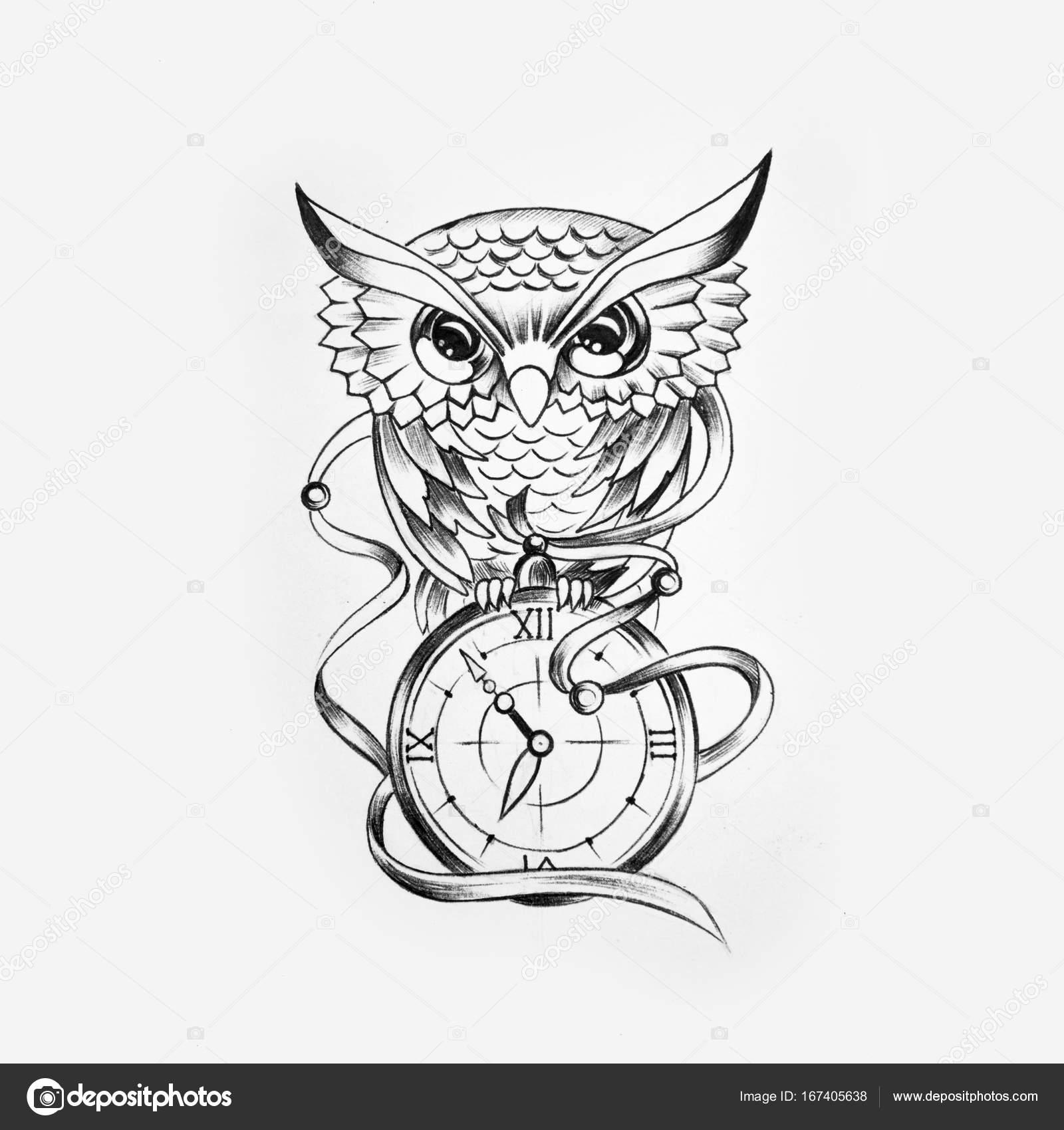Dibujo de un búho sabio con un reloj en un fondo blanco — Foto de ...