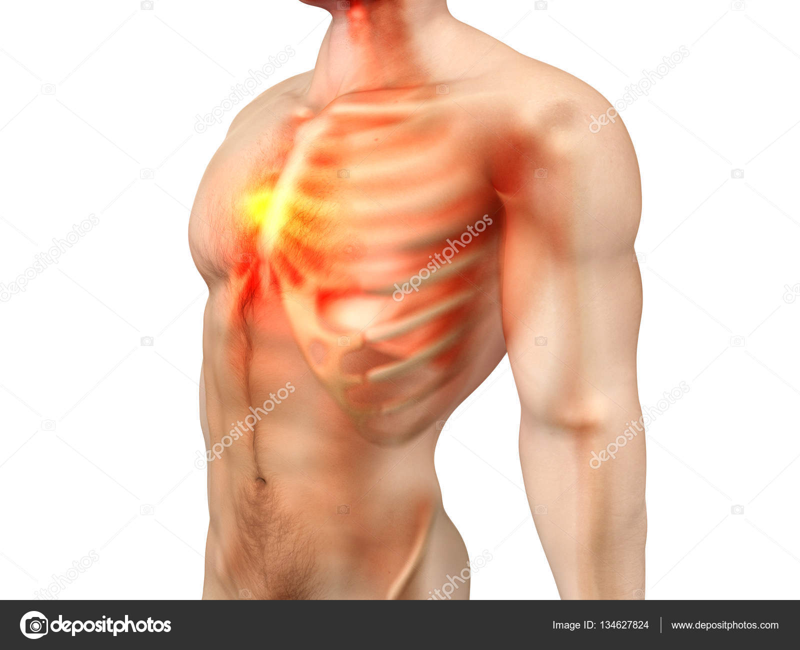 Male Anatomy Chest Pain Stock Photo Spectral 134627824