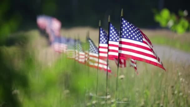Long Row of American Flags On Fence Waving in the Wind.