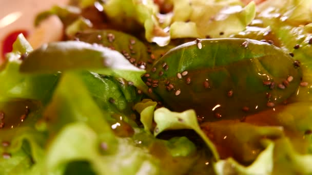 Green Salad Leaves and vegetables closeup.