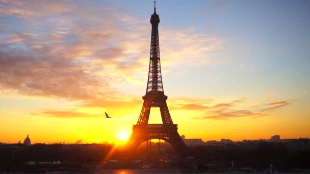 Krásný východ slunce trouba slavný Eiffelova věž s létající racek v Paříži, Francie