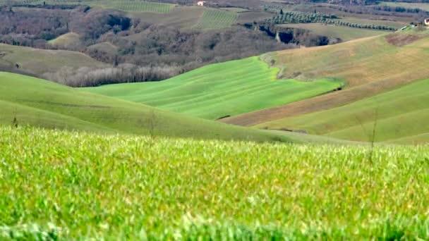 Jellemző toszkán táj val d arbia egy szeles napon, Kréta senesi, Siena, Olaszország.