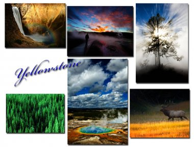 Yellowstone National Park Montage