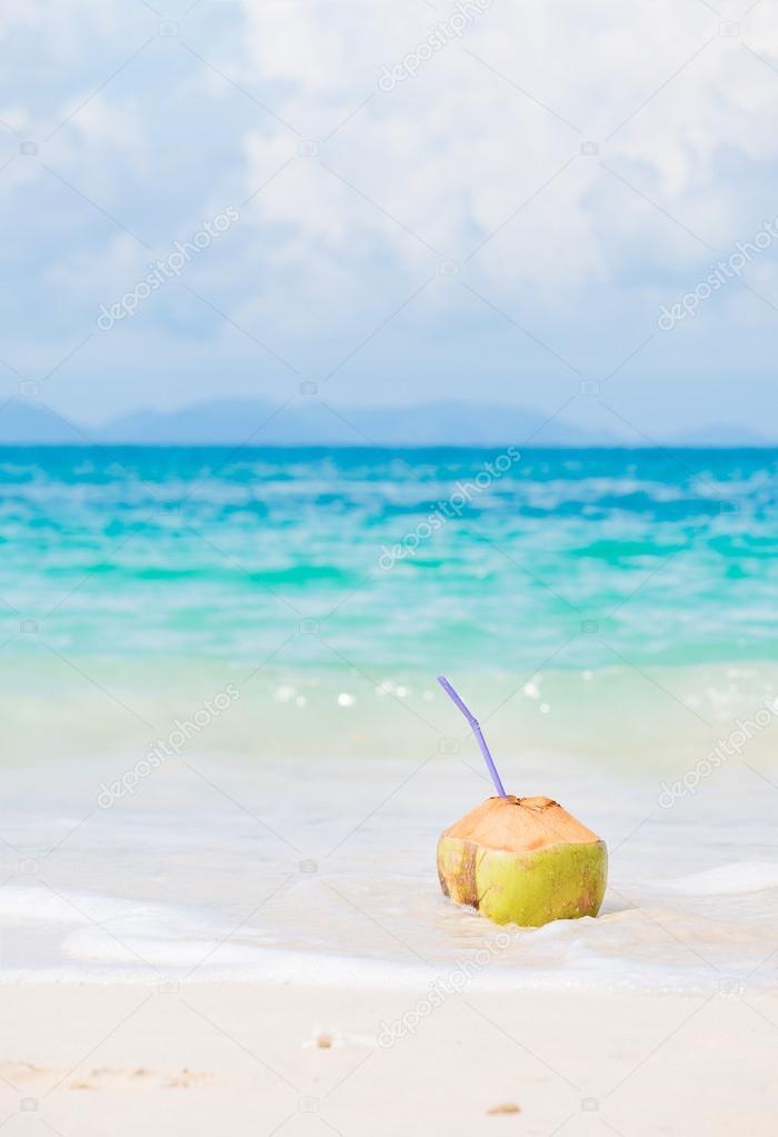 fresh coconut cocktail on tropical beach