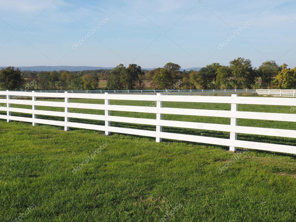 weißer zaun durch ein feld — stockfoto © cfarmer #128852914