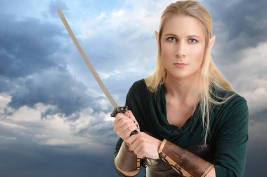 Portrait female elf with sword and stormy sky stock vector
