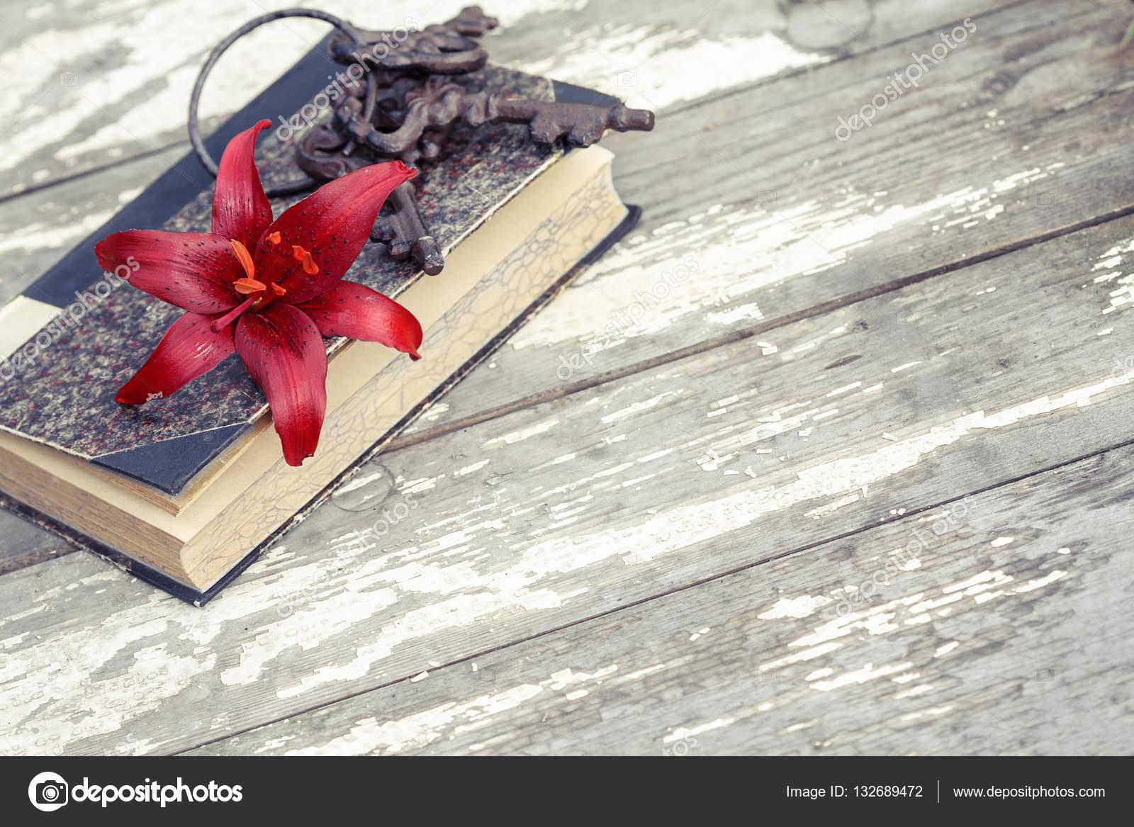赤いユリ (曖昧さ回避)、本およ...