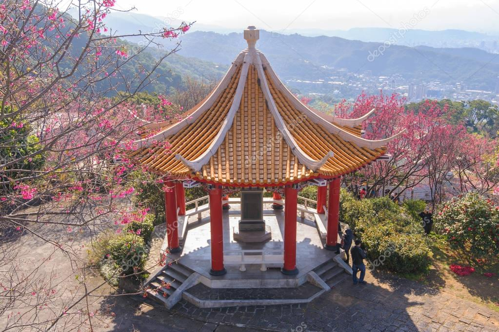 chinese pavilion in a park with cherry blossom
