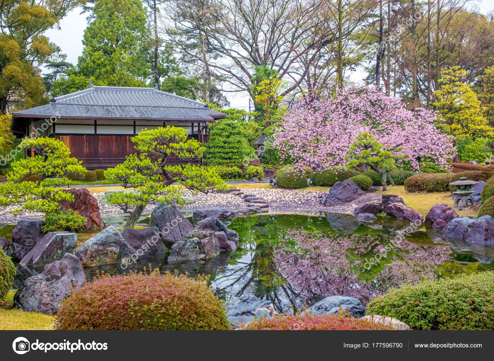 Ninomaru Garden Nijo Castle Kyoto Japan — Stock Photo