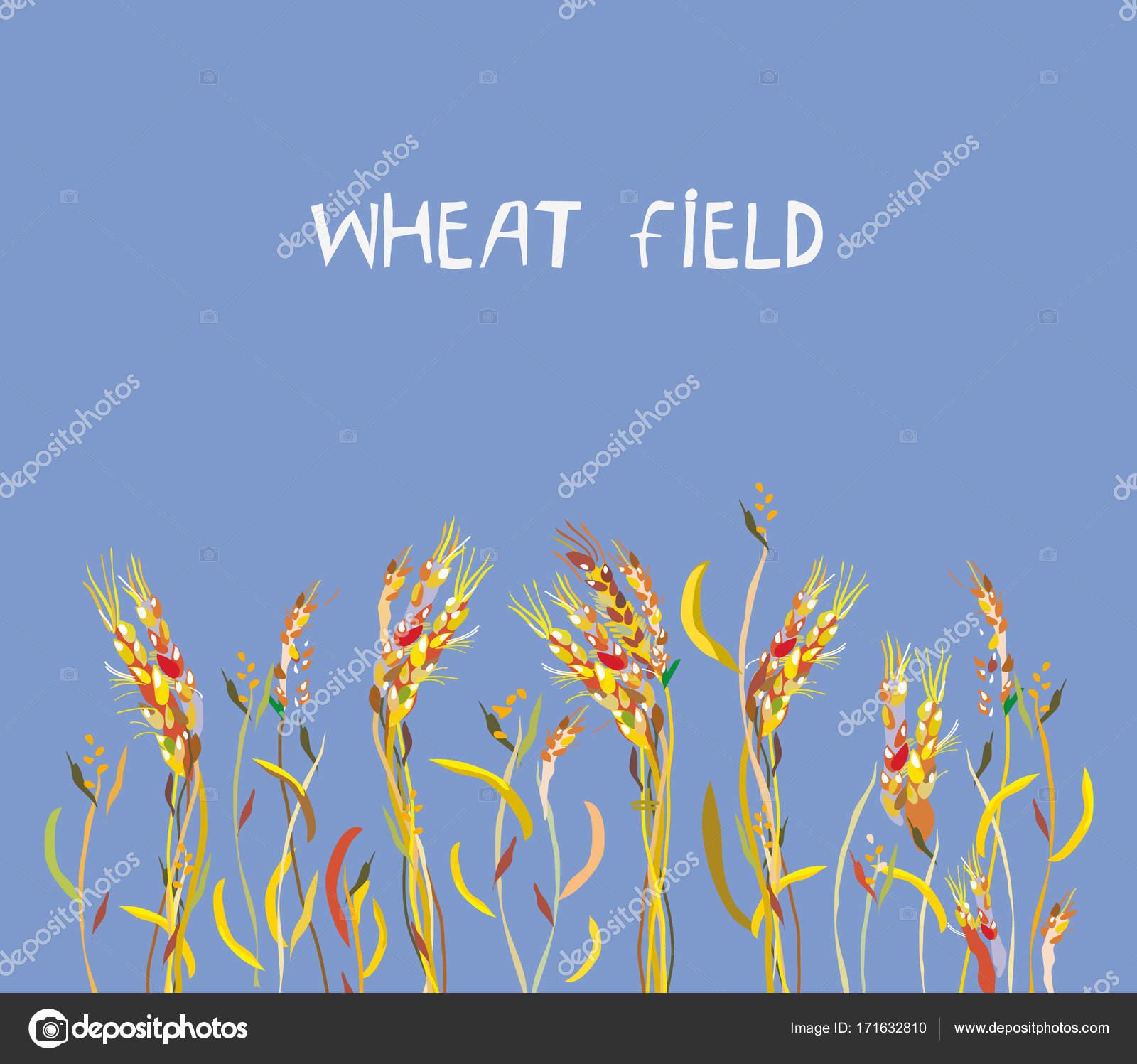 Buğday Alan Afiş Sonbahar Stok Vektör Tasia12 171632810