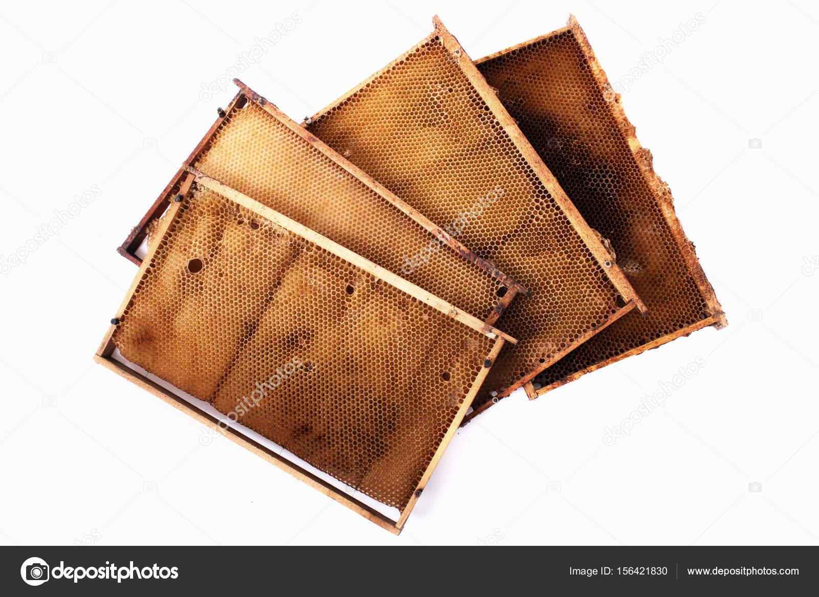 Honig Waben Rahmen — Stockfoto © jonnysek #156421830