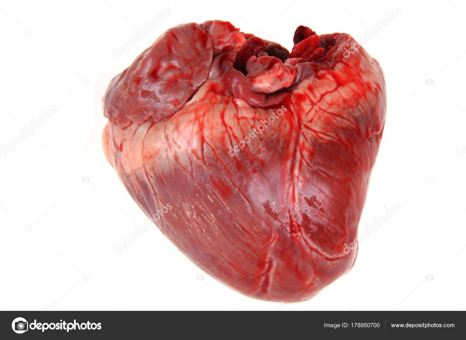 Pig Heart Isolated Stock Photo Jonnysek 178950700