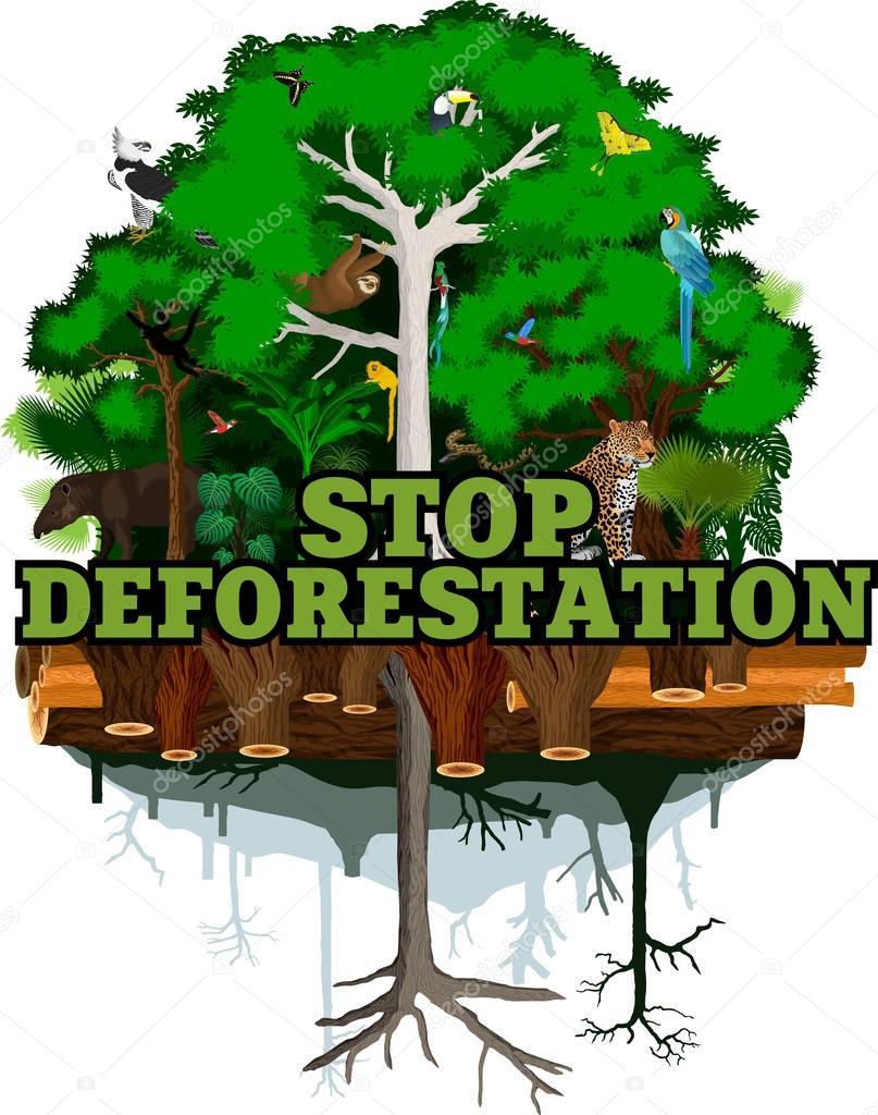 Deforestation jungle vector illustration. Vector Rainforest destroyed with animals.